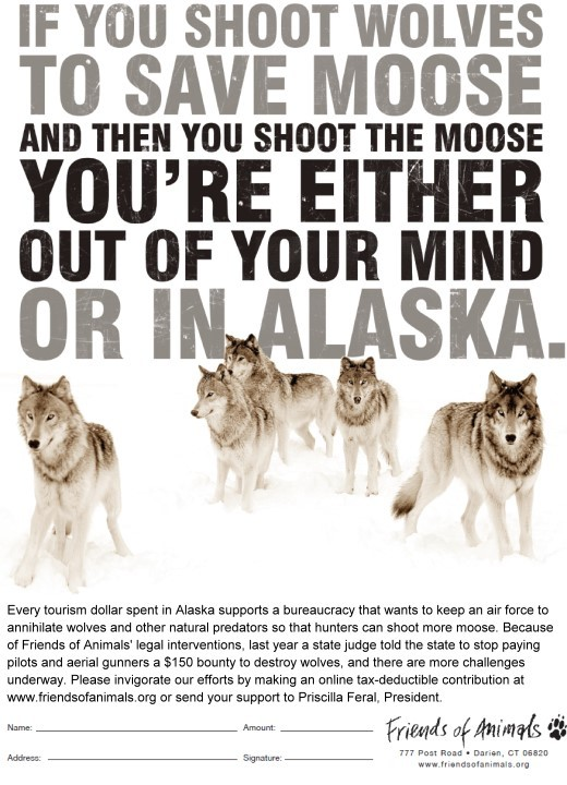 http://howlingforjustice.files.wordpress.com/2009/09/alaska_wolves