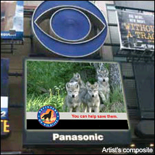 defenders wolf ad