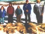 wolves killed inPolaris