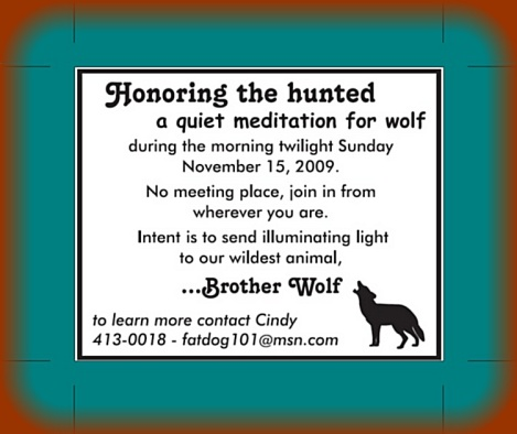 honoring the hunted 7