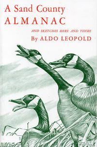 aldo leopolds hunting experience essay