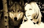 Howl Across America SongArtwork