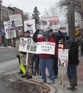 NIWA Protest Against Wolf Hunts