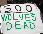 Over500wolvesdeadintheNorthernRockiesMarch232012-2