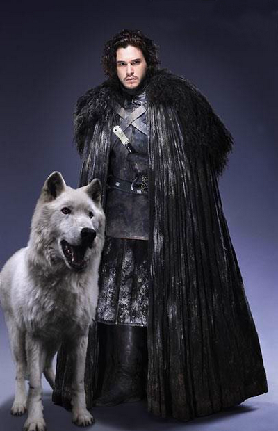ghost with jon snow got howling for justice. Black Bedroom Furniture Sets. Home Design Ideas