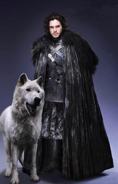 jon snow wolf