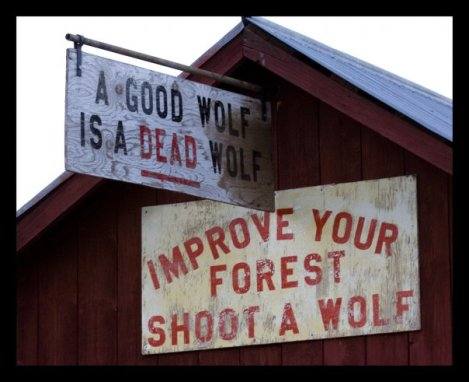 wolf sign photo credit whitewolvepackdotcom