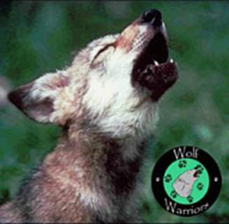 wolfwarriors3-1-1
