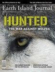 Hunted_The War Against Wolves_EIJ