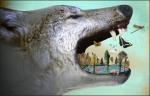 trophic cascade wolves
