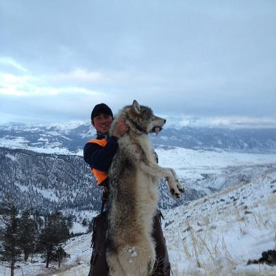 Wolf Killed_Source FB Posted November 13
