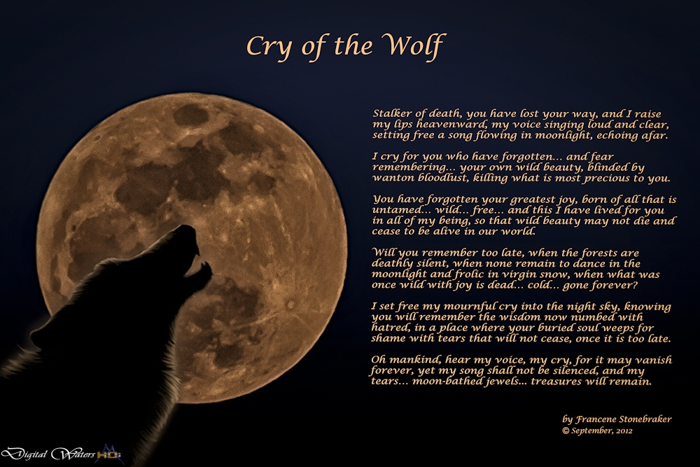 Cry Of The Wolf Howling For Justice
