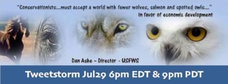 Tweetstorm Dan Ashe Director USFWS jpg