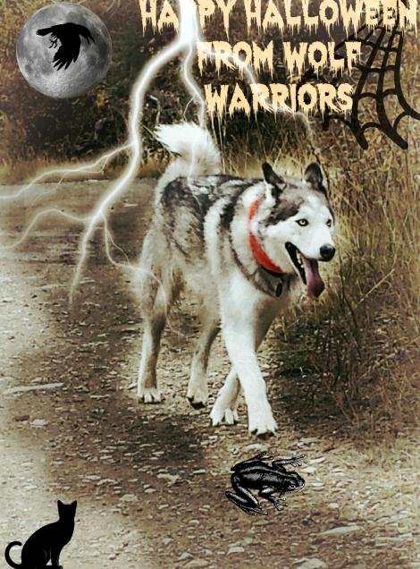 Happy Halloween From Wolf Warriorsjpg