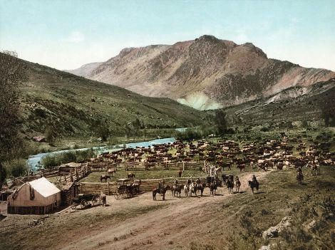 Cowboys 1898 round up in Colorado