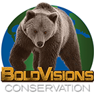 bold visions conservations