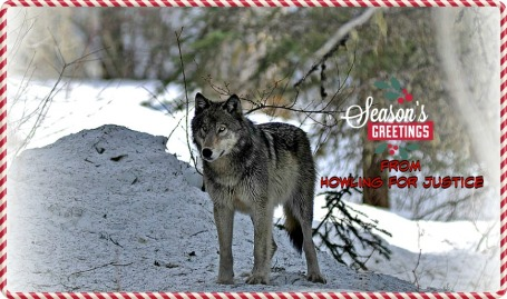 Seasons Greetings from Howling for Justice