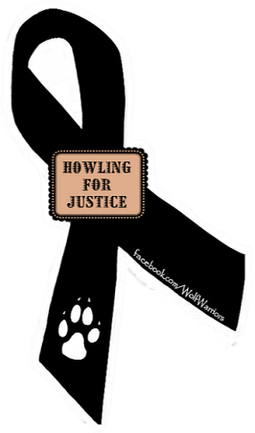 hfj-ribbon 1 png